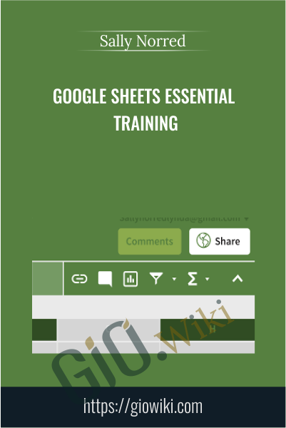 Google Sheets Essential Training - Sally Norred