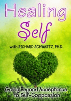 Healing Self: Going Beyond Acceptance to Self-Compassion - Richard C. Schwartz