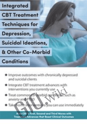 Integrated CBT Treatment Techniques for Depression, Suicidal Ideations, & Other Co-Morbid Conditions - David M. Pratt