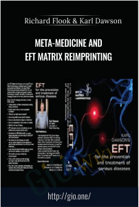 META-Medicine and EFT Matrix ReImprinting – Richard Flook & Karl Dawson