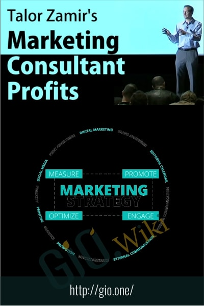 Marketing Consultant Profits - Talor Zamir