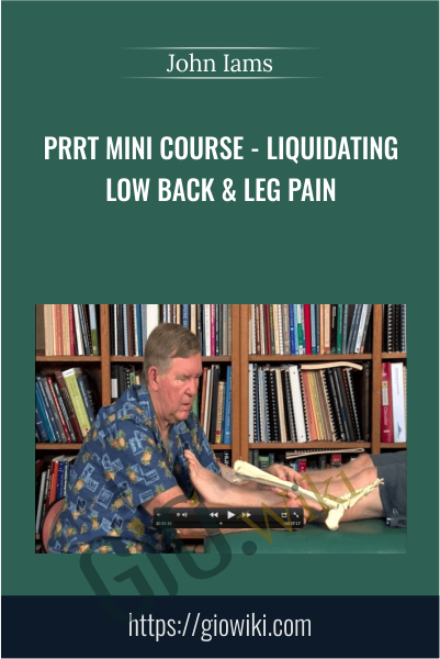 PRRT Mini Course - Liquidating Low Back & Leg Pain - John Iams