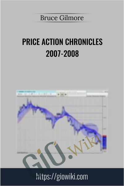 Price Action Chronicles 2007-2008 - Bruce Gilmore