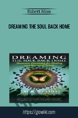 Dreaming the Soul Back Home – Robert Moss