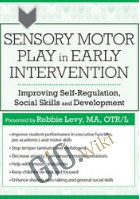 Sensory Motor Play in Early Intervention: Improving Self-Regulation, Social Skills and Development - Robbie Levy