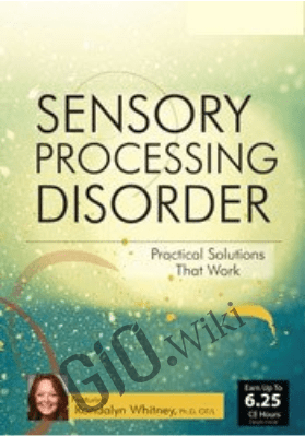Sensory Processing Disorder: Practical Solutions that Work - Rondalyn Varney Whitney