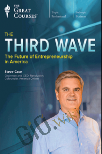 The Future of Entrepreneurship in America - The Third Wave