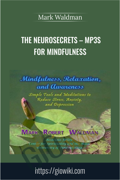The NeuroSecrets – MP3s for Mindfulness - Mark Waldman