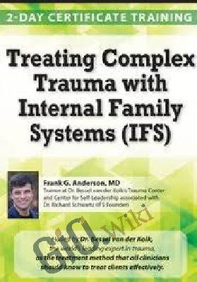 Treating Complex Trauma with Internal Family Systems (IFS): 2-Day Certificate Course - Frank G. Anderson