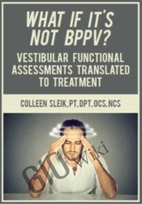 What If It's Not BPPV? Vestibular Functional Assessments Translated to Treatment - Colleen Sleik
