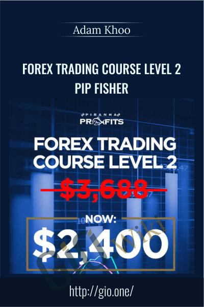 Forex Trading Course Level 2 - Pip Fisher
