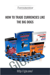 How to Trade Currencies Like the Big Dogs – Forexmentor