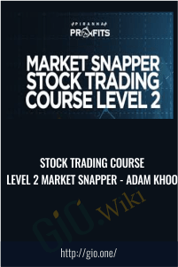Stock Trading Course Level 2 Market Snapper