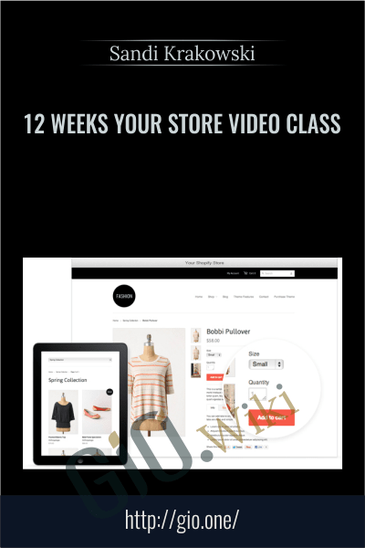 12 Weeks Your Store Video Class – Sandi Krakowski