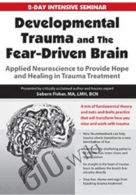 Developmental Trauma and The Fear-Driven Brain: Applied Neuroscience to Provide Hope and Healing in Trauma Treatment - Sebern Fisher