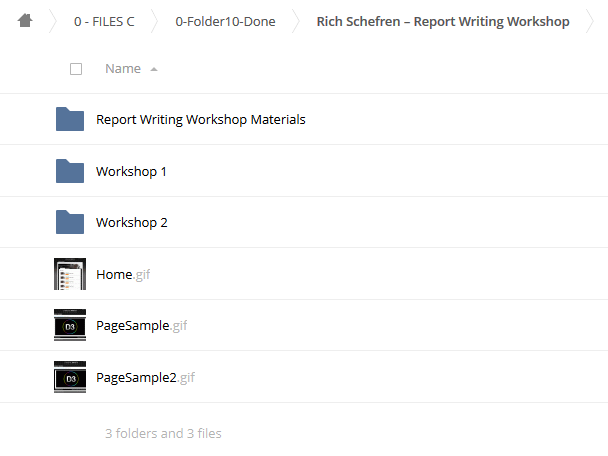 Report Writing Workshop – Rich Schefren