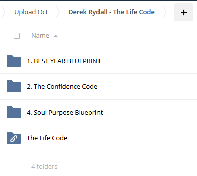 The Life Code - Derek Rydall