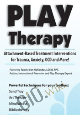 Play Therapy: Attachment-Based Treatment Interventions for Trauma, Anxiety, OCD and More! - Tammi Van Hollander