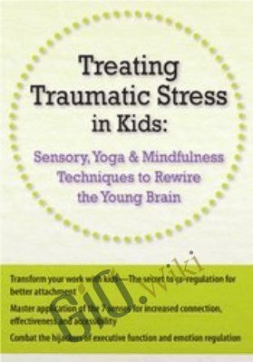 Treating Traumatic Stress in Kids: Sensory, Yoga & Mindfulness Techniques to Rewire the Young Brain - Victoria Grinman